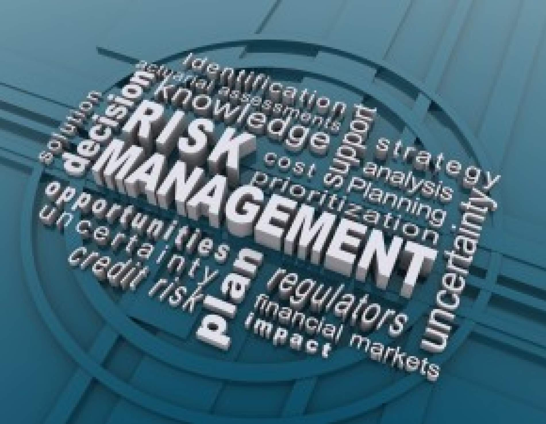 Risk-Management-Blue