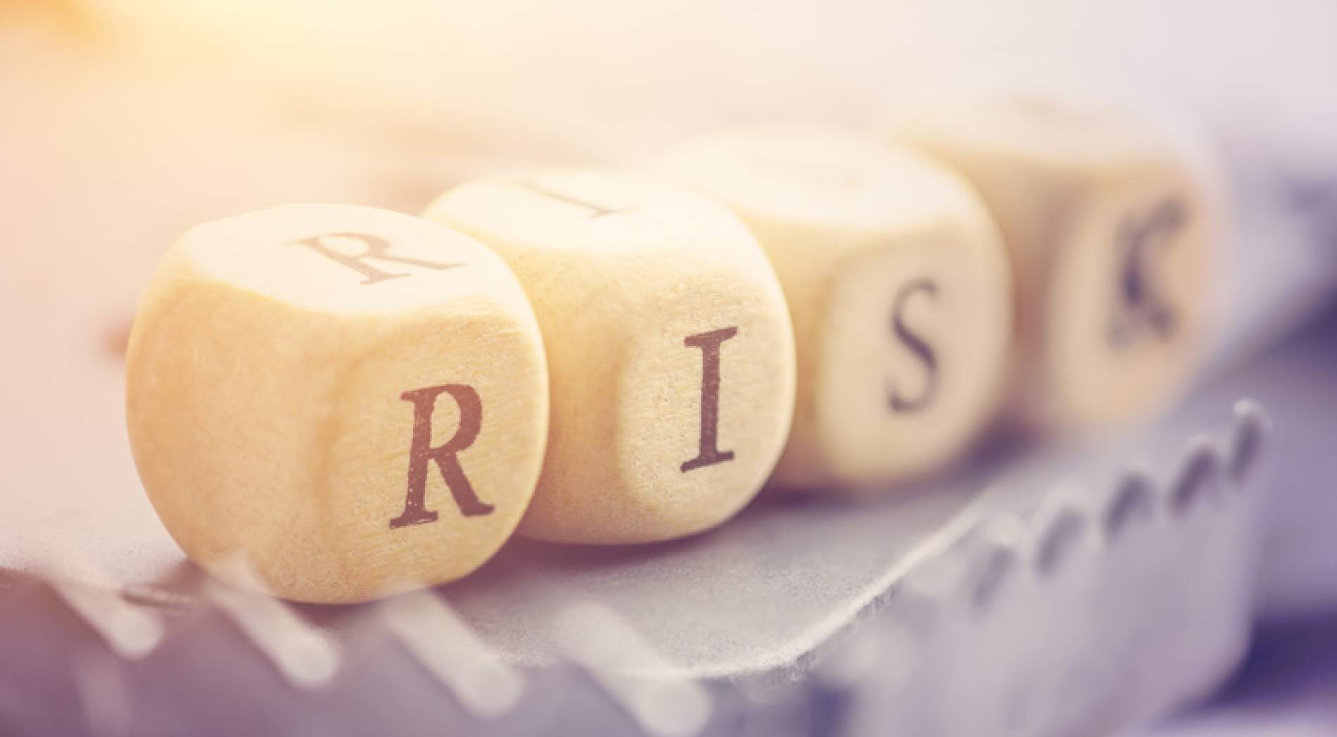 Professional Liability Risk